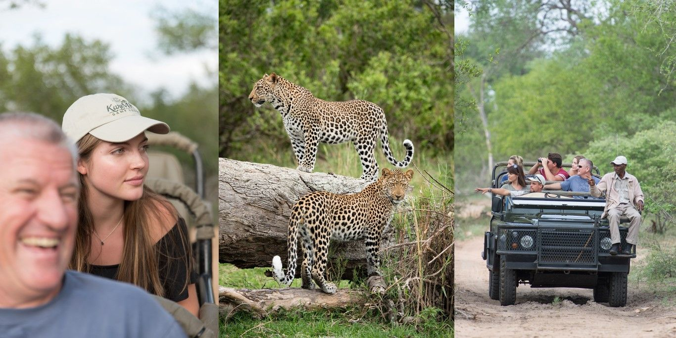 Thornybush Safari Lodge Hoedspruit